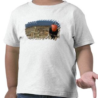 Ecuador Galapagos Genovesa Island Prince T-shirts