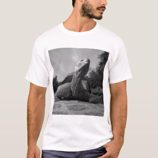 Ecuador, Galapagos Islands National Park, Santa T-Shirt