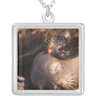 Ecuador, Galapagos Islands National Park, Silver Plated Necklace