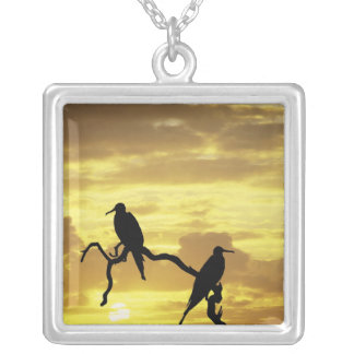 Ecuador, Galapagos Islands. Silhouette of Silver Plated Necklace
