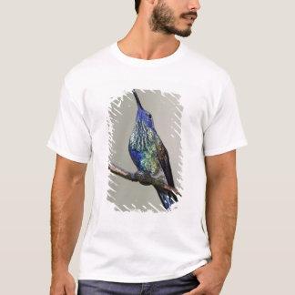 Ecuador, Tandayapa Bird Lodge. Sparkling T-Shirt