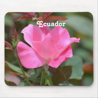 Ecuadorian Rose Mouse Pad