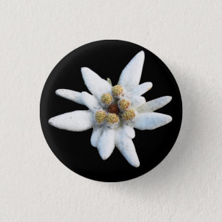 Edelweiss Alpine Flower 3 Cm Round Badge