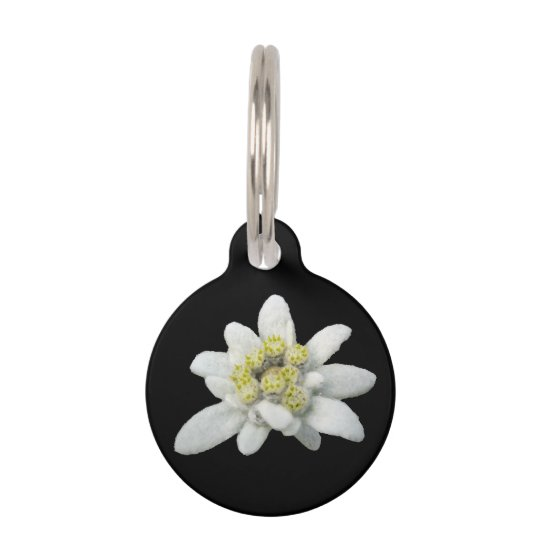 Edelweiss Floral Dog Tag