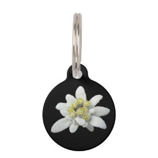 Edelweiss Floral Dog Tag Pet Tags