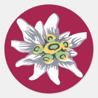 Edelweiss flower round sticker