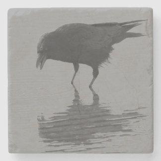 Edgar Allan Crow Coasters