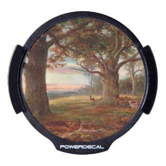 Edge of Sherwood Forest LED Auto Decal
