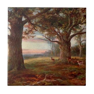 Edge of Sherwood Forest Tile