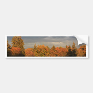 Edge of the woods bumper stickers