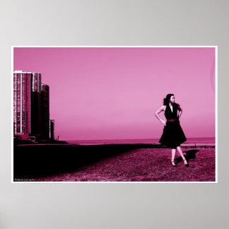 Edgewater beach, ill 2006 poster