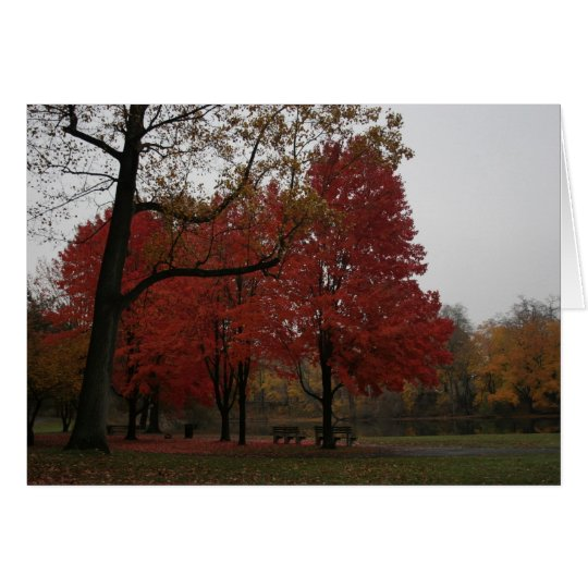 edgewood park in the fall card
