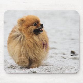 Edgrrrr #3 - Pomeranian Mouse Mat