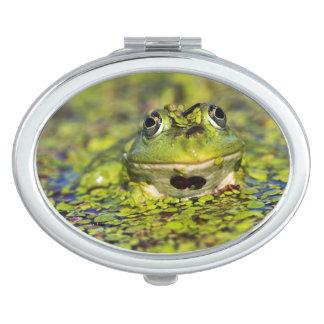 Edible Frog in the Danube Delta Vanity Mirrors
