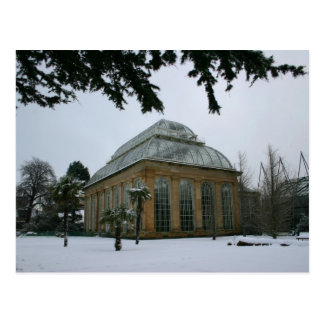 Edinburgh Royal Botanic Garden in the snow Postcard