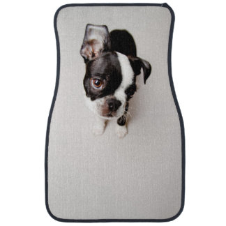 Edison Boston Terrier puppy. Car Mat