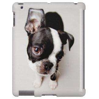 Edison Boston Terrier puppy. iPad Case