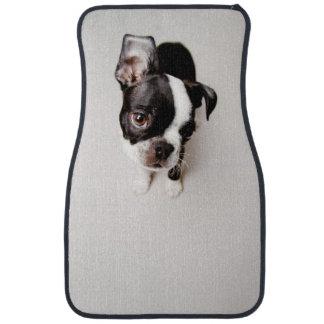 Edison Boston Terrier puppy. Floor Mat