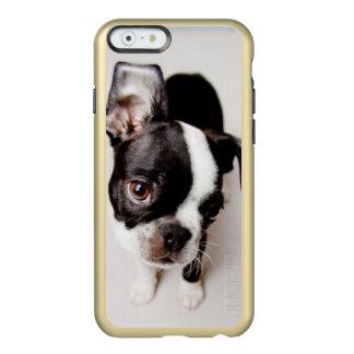 Edison Boston Terrier puppy. Incipio Feather® Shine iPhone 6 Case