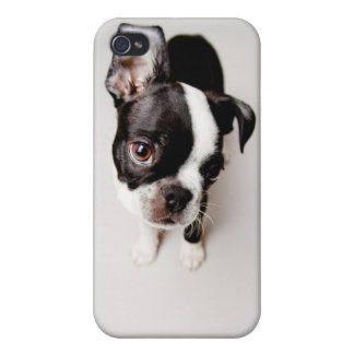 Edison Boston Terrier puppy. iPhone 4/4S Cover