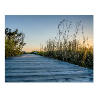 Edisto Beach, South Carolina Postcard
