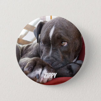 Editable Baby Pitbull Puppies 6 Cm Round Badge