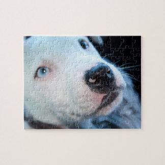 Editable Baby Pitbull White Puppy Jigsaw Puzzle