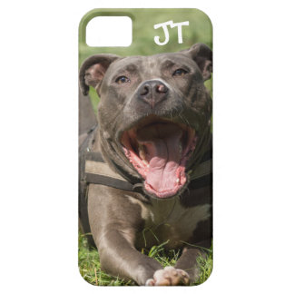 Editable Brown Pitbull In Grass iPhone 5 Covers