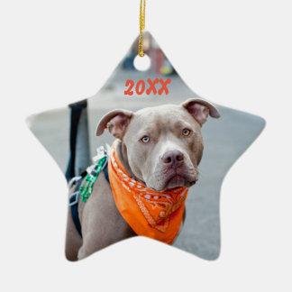 Editable Dog with Bandana Christmas Ornament