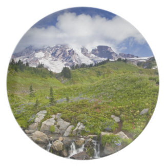 Edith Creek and wildflower meadows at Paradise Plates