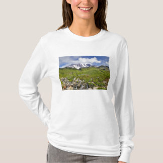 Edith Creek and wildflower meadows at Paradise T-Shirt