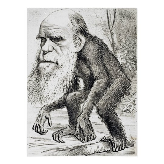 Editorial Cartoon Of Charles Darwin 1871 Poster