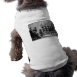 Educated Dogs Pet T Shirt