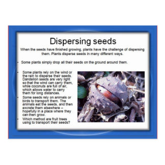 Education, Science, Dispersing seeds Postcards
