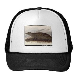 Edward Lear s Banded Mongoose Trucker Hat