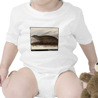 Edward Lear s Banded Mongoose T-shirt