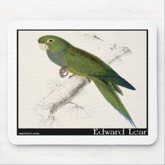 Edward Lear s Dwarf Parakeet-Macaw Mousepad