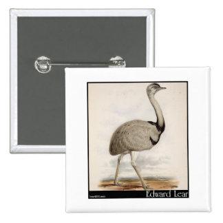 Edward Lear s Emu Buttons