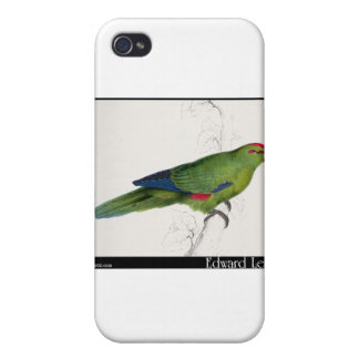 Edward Lear s Pacific Parakeet iPhone 4 Covers