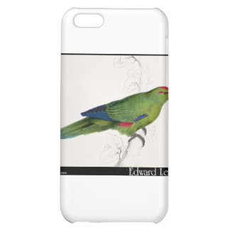Edward Lear s Pacific Parakeet Case For iPhone 5C