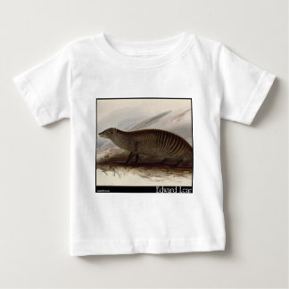 Edward Lear's Banded Mongoose Baby T-Shirt