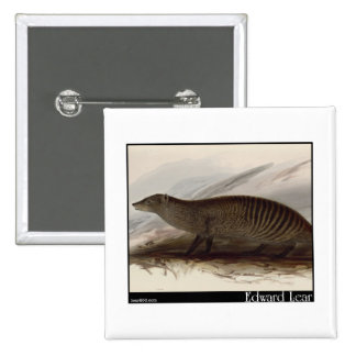 Edward Lear's Banded Mongoose Pins
