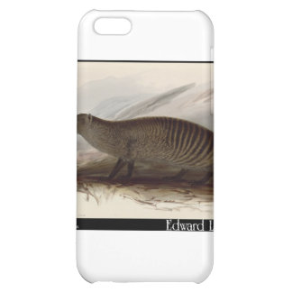 Edward Lear's Banded Mongoose Cover For iPhone 5C