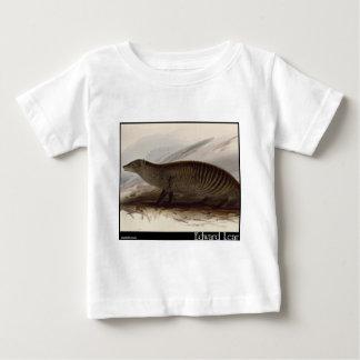 Edward Lear's Banded Mongoose Tee Shirts