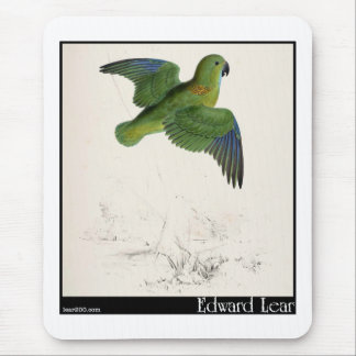 Edward Lear's Collared Parakeet in flight Mouse Pad
