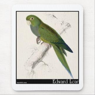 Edward Lear's Dwarf Parakeet-Macaw Mouse Pad