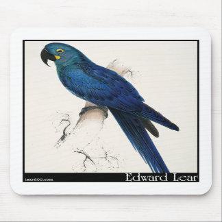 Edward Lear's Hyacinth Macaw Mousepad