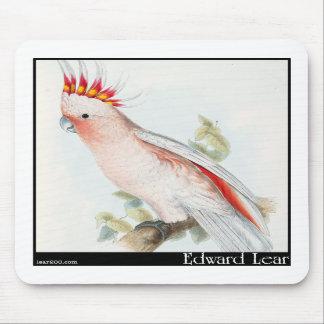 Edward Lear's Leadbeater's Cockatoo Mousepad