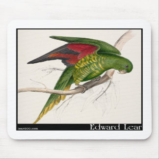 Edward Lear's Maton's Parakeet Mouse Pads