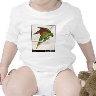 Edward Lear's Maton's Parakeet T-shirt